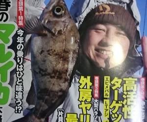 外房ヤリイカ最前線!!。