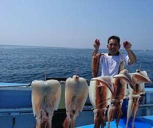 外房勝浦川津のスルメイカ!!。