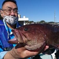 11月4日 外房勝浦川津のカモシ釣り!!。のサムネイル