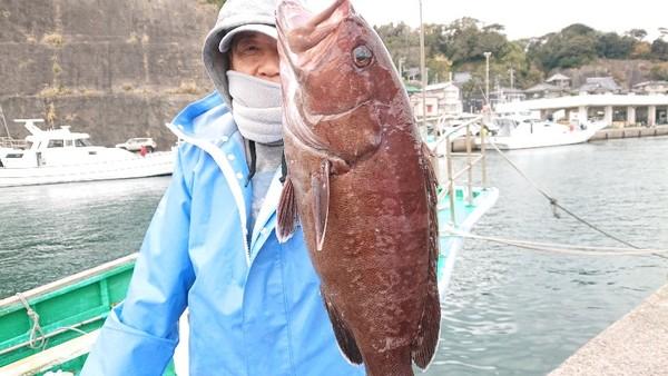 12月22日 外房勝浦川津のマハタ狙い!!。