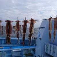 10月9日 午前船はスルメイカ!!。のサムネイル